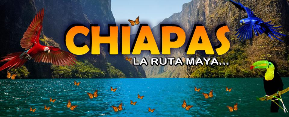 plantilla Chiapas2