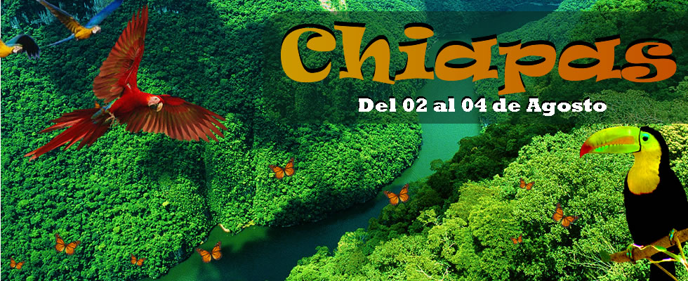 plantilla Chiapas