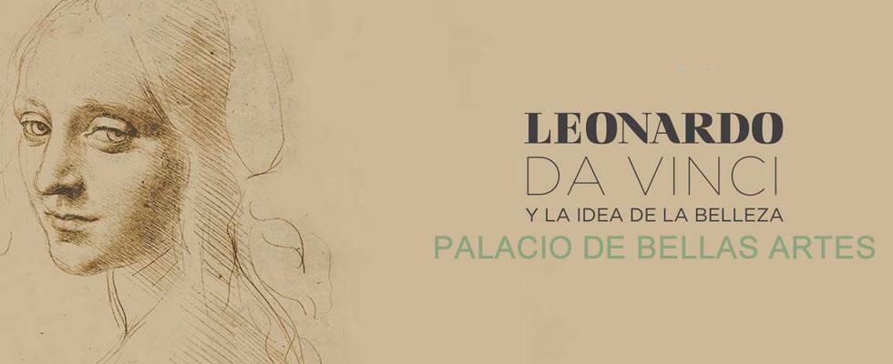 plantilla leo